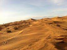 Dunas de areia no Sahara Imagens de Stock