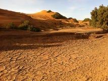 Dunas de areia no Sahara Imagem de Stock Royalty Free