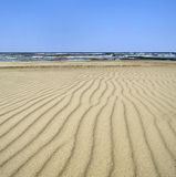 Dunas de areia pelo mar Imagens de Stock
