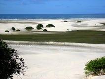 Dunas de areia pelo oceano Fotos de Stock