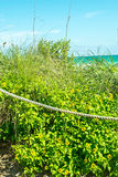 Dunas de areia Roped Fotografia de Stock Royalty Free