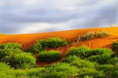 Dunas de areia vermelhas de Kalahari fotos de stock
