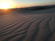 Dunas de arena foto de archivo