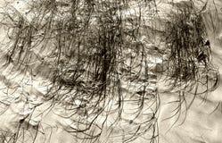 Dunas de arena 2 Fotos de archivo libres de regalías