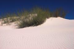 Dunas de arena blancas en desierto Imágenes de archivo libres de regalías