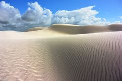 Dunas de arena blancas puestas en contraste en un desierto en sur de Australia fotografía de archivo libre de regalías