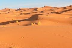 Dunas de arena de Chebbi del ergio cerca de Merzouga, Marruecos imagenes de archivo