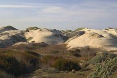 Dunas de arena costeras salvajes Fotografía de archivo libre de regalías