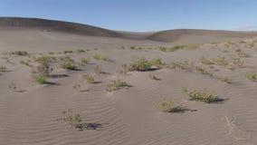 Dunas de arena de Bruneau Idaho 21 almacen de metraje de vídeo