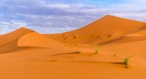 Dunas de arena de Chebbi del ergio en desierto marroquí por la mañana Fotografía de archivo libre de regalías
