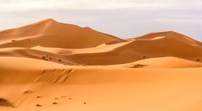 Dunas de arena de Chebbi del ergio en el desierto marroquí Imágenes de archivo libres de regalías