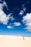 Dunas de arena de Henty Tasmania Fotos de archivo libres de regalías