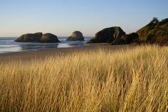 Dunas de arena de la playa del cañón Foto de archivo libre de regalías
