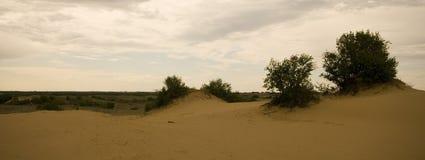 Dunas de arena de Saskatchewan Fotos de archivo
