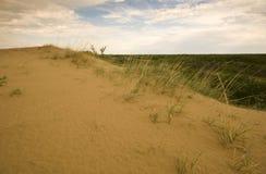Dunas de arena de Saskatchewan Foto de archivo