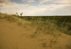 Dunas de arena de Saskatchewan Fotografía de archivo libre de regalías