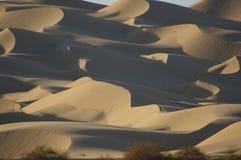 Dunas de arena del desierto Fotos de archivo libres de regalías