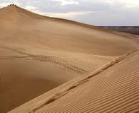 Dunas de arena del desierto de Sáhara Foto de archivo libre de regalías