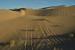 Dunas de arena en el área recreativa imperial de las dunas de arena, California Foto de archivo libre de regalías