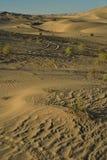 Dunas de arena en el área recreativa imperial de las dunas de arena, California Fotografía de archivo