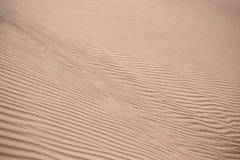 Dunas de arena en el desierto Imagenes de archivo