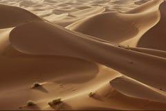 Dunas de arena en el desierto de Sáhara Imagen de archivo