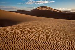 Dunas de arena en el ergio Chigaga Fotos de archivo