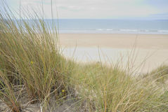 Dunas de arena en la playa Imagen de archivo libre de regalías