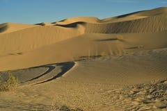 Dunas de arena en las dunas de arena imperiales, California, los E.E.U.U. Imagen de archivo libre de regalías
