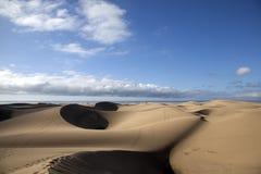 Dunas de arena en Maspalomas fotografía de archivo libre de regalías