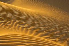 Dunas de arena en sol de la tarde Imagen de archivo