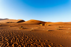 Dunas de arena en Sossusvlei, Namibia Fotos de archivo libres de regalías