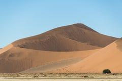 Dunas de arena enormes Foto de archivo libre de regalías