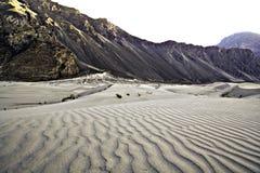Dunas de arena frías del desierto de la India Imágenes de archivo libres de regalías