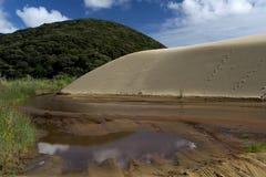 Dunas de arena gigantes de Te Paki Fotos de archivo libres de regalías