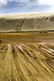 Dunas de arena gigantes de Te Paki II Imagenes de archivo