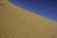 Dunas de arena perfectas del desierto Fotografía de archivo