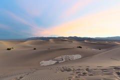 Dunas de arena planas del Mesquite Foto de archivo libre de regalías