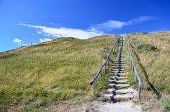 dunas de condução da escadaria de madeira cobertas na grama na paisagem protegida, conduzindo para encalhar na ilha Texel nos Paí fotografia de stock