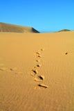 Dunas de Corralejo, Fuerteventura, Ilhas Canárias, Espanha Foto de Stock Royalty Free