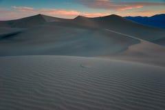 Dunas de Death Valley, mañana Fotos de archivo