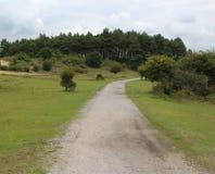 Dunas de Kennemerland del parque nacional Imagenes de archivo