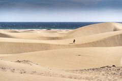 Dunas de Maspalomas Stock Photos