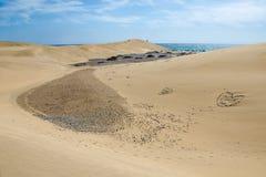 Dunas de Maspalomas, Gran Canaria, Spanien lizenzfreie stockbilder