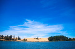 Dunas de Oregon imagens de stock