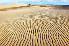 Dunas de Sandy de Maspalomas Gran Canaria Ilhas Canárias Imagem de Stock Royalty Free