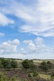 Dunas de Texel Fotos de Stock Royalty Free