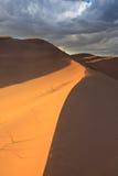Dunas del desierto Fotos de archivo libres de regalías