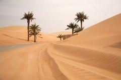 Dunas del desierto de la arena Imagen de archivo libre de regalías