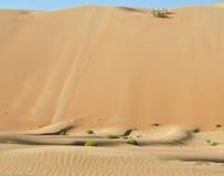 Dunas del desierto de Liwa Fotografía de archivo libre de regalías
